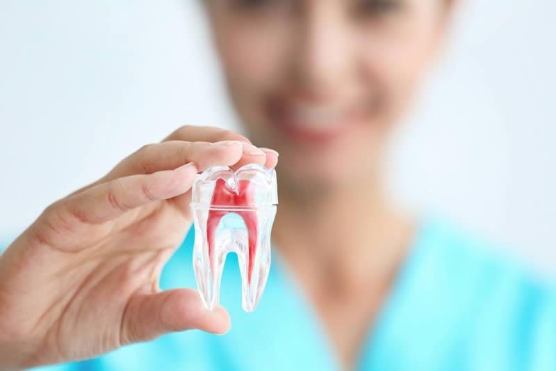 điều trị nội nha assure dental